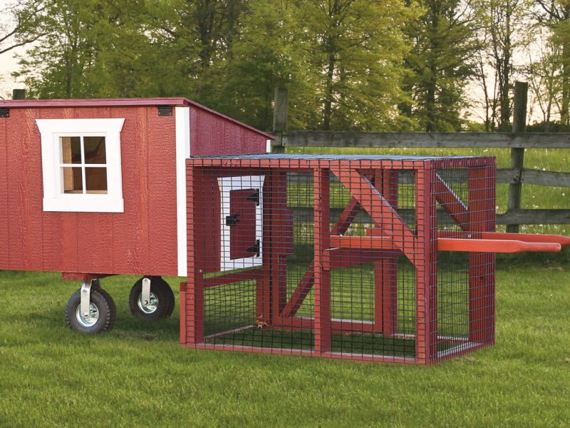 3x4-Lean-to-Tractor-With-Duratemp-siding-1600x1600-animalenclosures