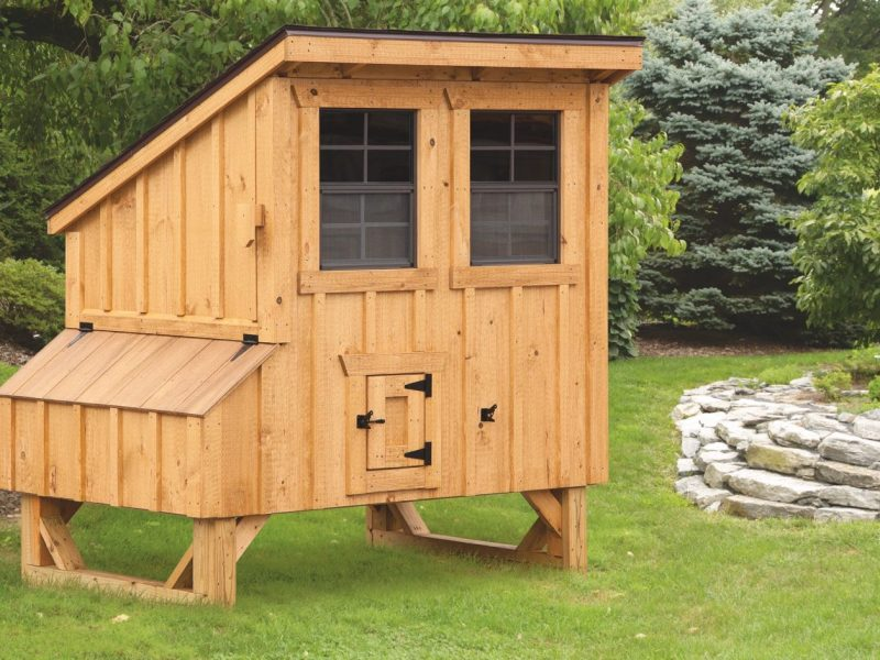 small-chicken-coops-4x5-Lean-To-1600x1600-animalenclosures