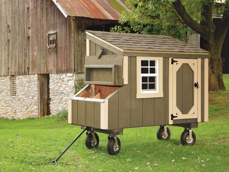 small-chicken-coops-Avocado-L35-With-Optional-Wheels-and-Handle-Front-View-1600x1600-animalenclosures